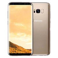 Samsung Galaxy S8+ Plus Dual SIM 64GB 4G LTE International Smartphone Gold UNLOCKED (1 YEAR WARRANTY)