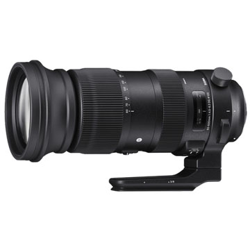 New Sigma 60-600mm F4.5-6.3 DG OS HSM Sport Lens for Nikon (FREE DELIVERY + 1 YEAR WARRANTY)