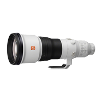 New Sony FE 600mm F4 GM OSS Lens (FREE DELIVERY + 1 YEAR WARRANTY)